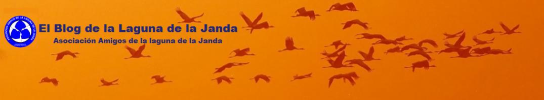 Blog de la Asociación de Amigos de la Laguna de la Janda